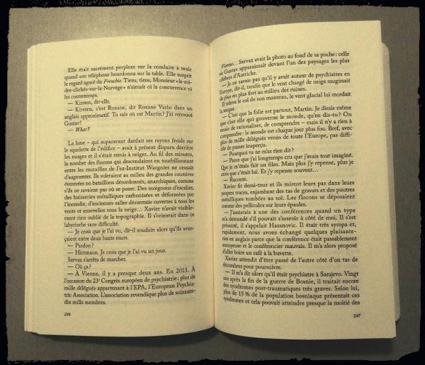 Roman NUIT de Bernard MINIER
